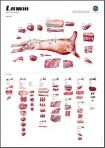 Klicka på bilden för att visa styckningsdetaljer för Lamm från Svenskt Kött!